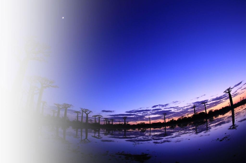 1280x850_photo_comp
