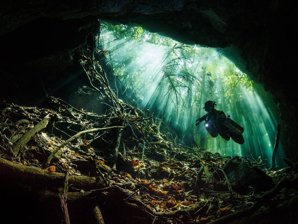 Terry_Steeley_Taj_Mahal_Cenote